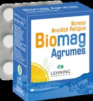 Lehning Biomag Comprimés à Croquer Agrumes B/90 à  ILLZACH
