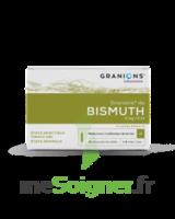 Granions De Bismuth 2 Mg/2 Ml S Buv 10amp/2ml à  ILLZACH