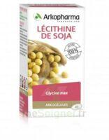 Arkogélules Lécithine De Soja Caps Fl/45 à  ILLZACH