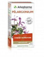 Arkogélules Pélargonium Gélules Fl/45 à  ILLZACH