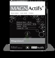 Synactifs Magnactifs Gélules B/60 à  ILLZACH