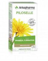 Arkogélules Piloselle Gélules Fl/45 à  ILLZACH