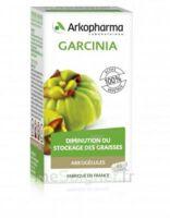 Arkogélules Garcinia Gélules Fl/45 à  ILLZACH