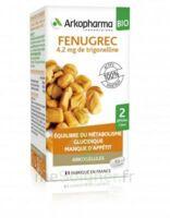 Arkogélules Fenugrec Bio Gélules Fl/40 à  ILLZACH