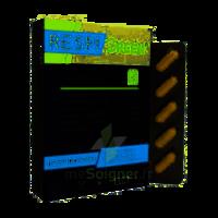 Synactifs Respigreen Bio Gélules B/10 à  ILLZACH