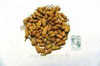 Adp Oranger Boutons Herboristrie Vrac 30g à  ILLZACH