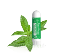 Puressentiel Respiratoire Inhaleur Respiratoire Aux 19 Huiles Essentielles - 1 Ml à  ILLZACH