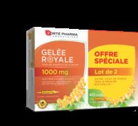 Forte Pharma Gelée Royale 1000 Mg Solution Buvable 2*b/20 Ampoules/10ml à  ILLZACH