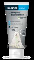 Biocanina Shampooing éclat Poils Blancs 200ml à  ILLZACH