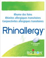 Boiron Rhinallergy Comprimés B/40 à  ILLZACH