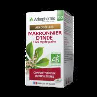 Arkogélules Marronnier D'inde Bio Gélules Fl/45 à  ILLZACH