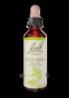 Fleurs De Bach® Original Wild Rose - 20 Ml à  ILLZACH